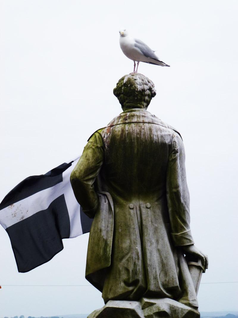 Cornwall-Bird